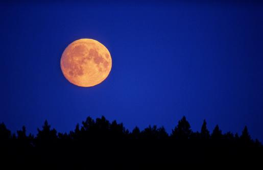 満月「満月」:スマホ壁紙(19)
