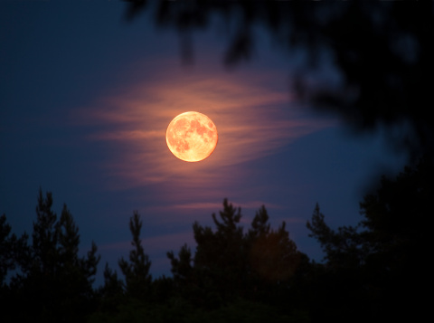 Moon「Full moon」:スマホ壁紙(10)