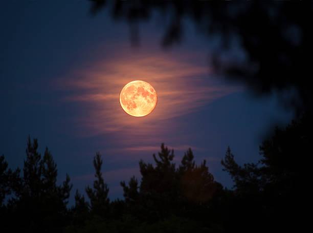 Full moon:スマホ壁紙(壁紙.com)