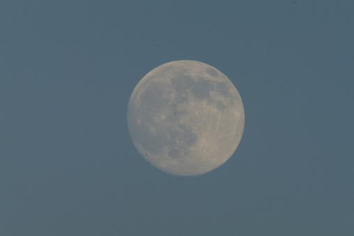 月「Full Moon」:スマホ壁紙(6)
