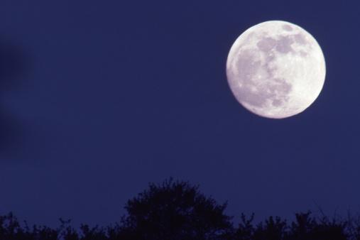 月「full moon」:スマホ壁紙(9)