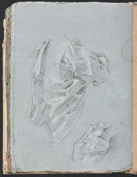 Curtain「Verona Sketchbook: Drapery Study With Left Hand (Page 86)」:写真・画像(12)[壁紙.com]