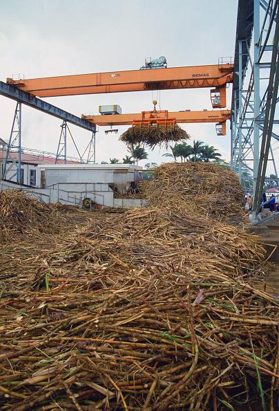 Tim Graham「Sugar Processing Factory, Mauritius」:写真・画像(5)[壁紙.com]
