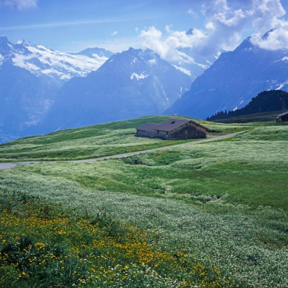 Chalet「Meadow in Grindelwald, Switzerland」:スマホ壁紙(1)