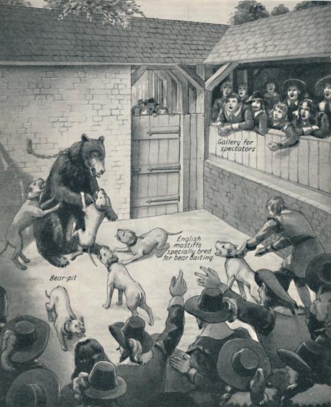 17th Century「Bear-Baiting In A Stuart Bear Pit」:写真・画像(12)[壁紙.com]
