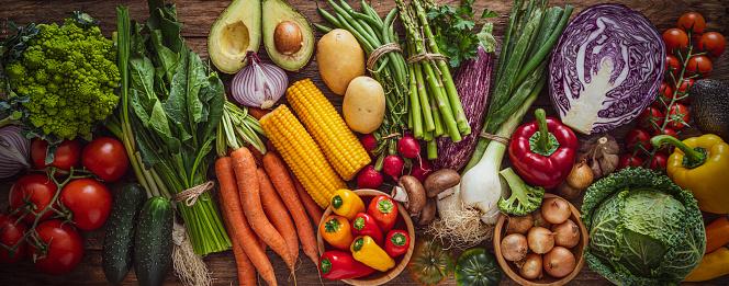 Bush Bean「Fresh organic vegetables banner.」:スマホ壁紙(16)