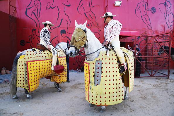 Baja California Peninsula「Dwindling Sport Of Bullfighting Still Draws Crowds In Tijuana」:写真・画像(14)[壁紙.com]