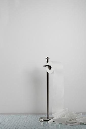 Toilet Roll Holder「Toilet paper spilling onto the floor」:スマホ壁紙(16)