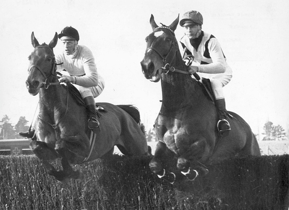 Horse「Jumping Arkle」:写真・画像(8)[壁紙.com]