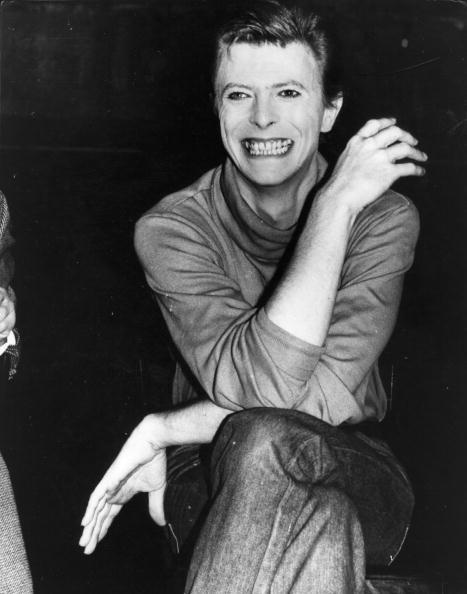 デヴィッド・ボウイ「Bowie The Elephant」:写真・画像(19)[壁紙.com]