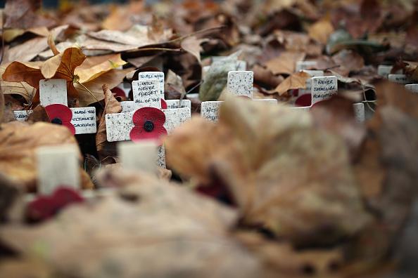 紅葉「Armistice Day Is Observed In London」:写真・画像(19)[壁紙.com]