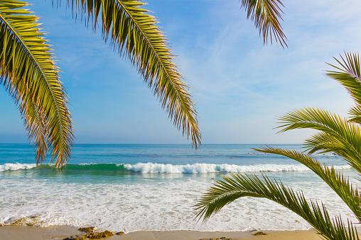 豪華 ビーチ「ラグーナビーチの海岸線、CA (P )」:スマホ壁紙(8)
