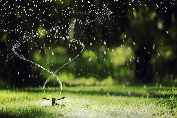 Garden sprinkler:スマホ壁紙(壁紙.com)