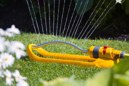 Sprinkler「Garden Sprinkler」:スマホ壁紙(15)