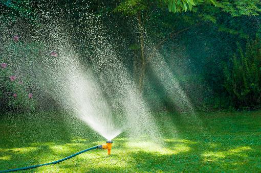 Sprinkler「Garden sprinkler on a lush green lawn.」:スマホ壁紙(6)
