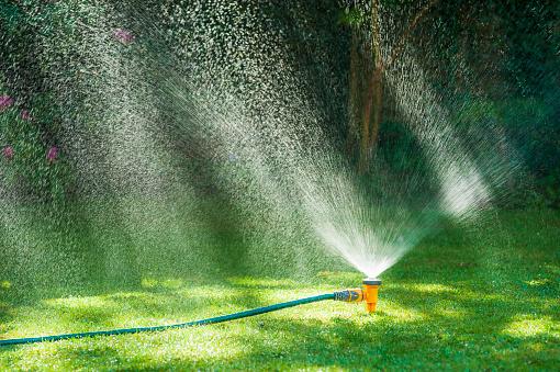 Sprinkler「Garden sprinkler on a lush green lawn.」:スマホ壁紙(12)