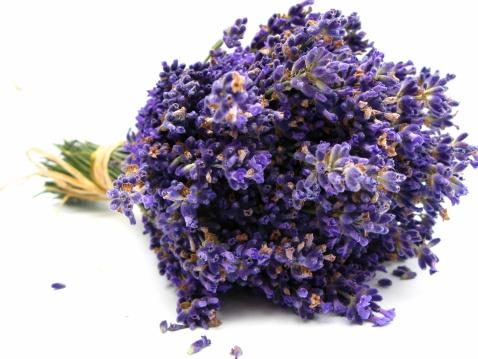Dried Plant「Lavender」:スマホ壁紙(15)