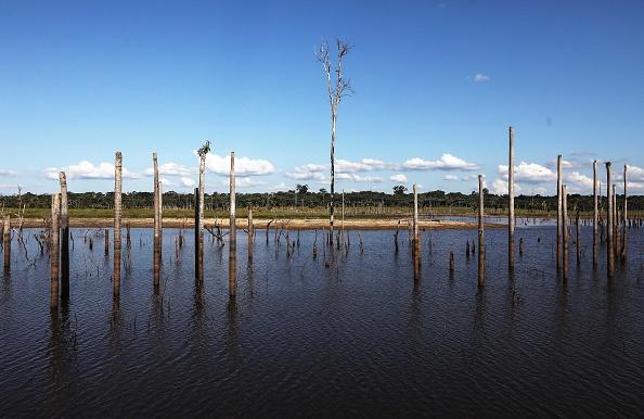 Amazon Rainforest「Fighting Recession, Level of Deforestation in Brazil Reaches Nine Year High」:写真・画像(12)[壁紙.com]