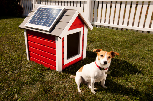 Solar Energy「Dog with solar panel on dog house」:スマホ壁紙(13)