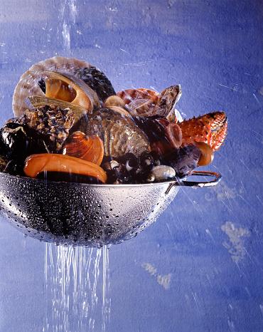 カタツムリ「ランドリー amp \;;甲殻類の貝やコランダー」:スマホ壁紙(8)