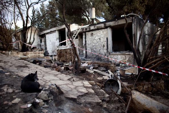 Environmental Damage「Israeli Residents Return To Aftermath Following Wildfires」:写真・画像(19)[壁紙.com]