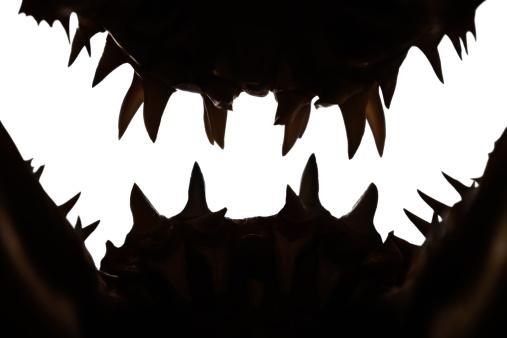 Animal Teeth「Mako shark jaws terrifying toothy silhouette」:スマホ壁紙(14)