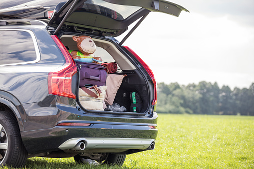 Passenger「Car on meadow with open boot full of luggage」:スマホ壁紙(4)