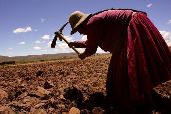 風景「Poverty A Force Behind Presidential Race in Bolivia」:写真・画像(9)[壁紙.com]