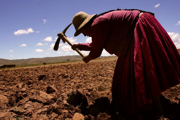 Non-Urban Scene「Poverty A Force Behind Presidential Race in Bolivia」:写真・画像(8)[壁紙.com]