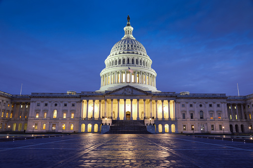 Election「USA Capitol building Washington DC」:スマホ壁紙(19)