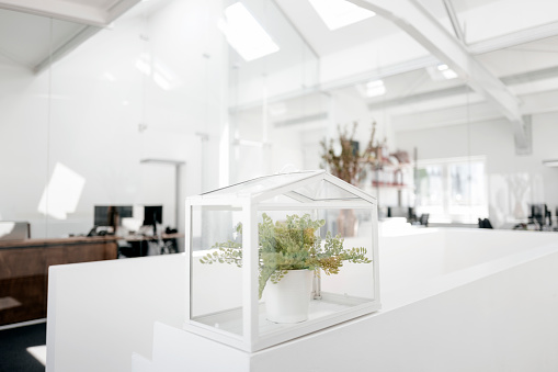 Protection「Plant in glass box on railing in office」:スマホ壁紙(0)