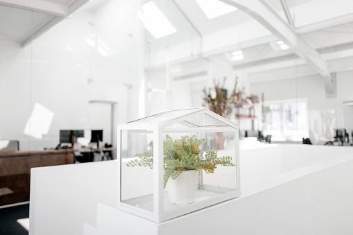 保護「Plant in glass box on railing in office」:スマホ壁紙(8)