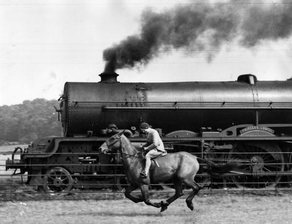 Horse「Steamy Steed」:写真・画像(9)[壁紙.com]