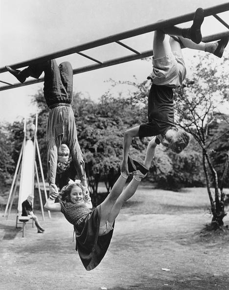 Fred Morley「Monkey Climbers」:写真・画像(2)[壁紙.com]