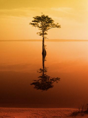 Spirituality「Stillness-orange」:スマホ壁紙(18)