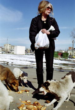 animal「Brigitte Bardot Lobbies to Save Romanian Dogs」:写真・画像(7)[壁紙.com]
