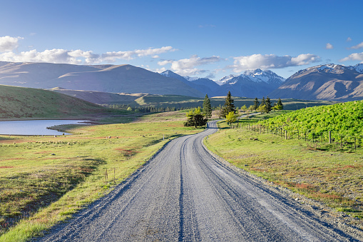 New Zealand「Lake Tekapo Godley Peaks Road Canterbury New Zealand」:スマホ壁紙(8)