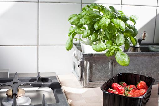 Basil「Stillife in a kitchen」:スマホ壁紙(19)