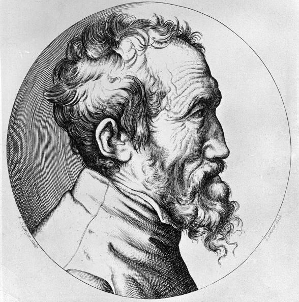 Michelangelo - Artist「Michelangelo」:写真・画像(5)[壁紙.com]