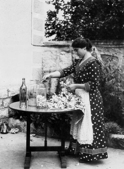 Petal「Industry of perfumes in Grasse, France : here lily petals conserved in alcohol c. 1912」:写真・画像(19)[壁紙.com]