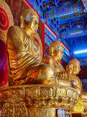 Buddha statue「Thai China Buddha Image statue in dragon temple, Bangkok, Thailand」:スマホ壁紙(7)