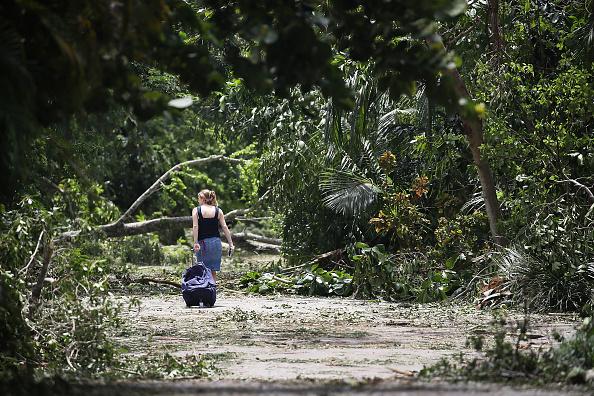 Damaged「Powerful Hurricane Irma Slams Into Florida」:写真・画像(2)[壁紙.com]