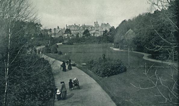 イネ科「Boscombe Gardens」:写真・画像(15)[壁紙.com]