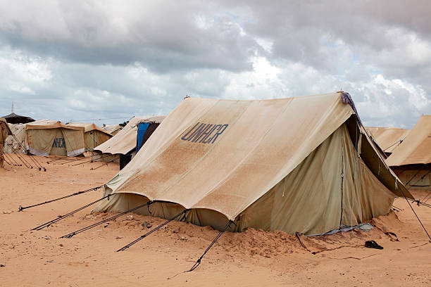 Choucha refugee camp:スマホ壁紙(壁紙.com)