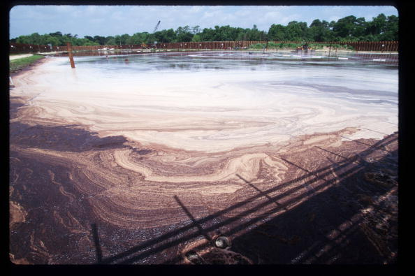 Ecosystem「Bioremediation Used In Toxic Waste Cleaning」:写真・画像(4)[壁紙.com]