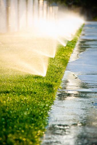 Spraying「Afternoon Sprinklers」:スマホ壁紙(11)