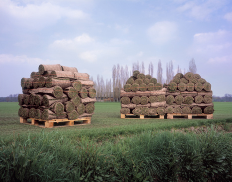 North Brabant「Neat stacks with rolls of grass in the countryside」:スマホ壁紙(19)
