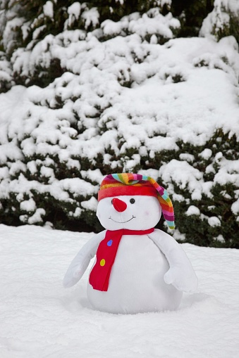雪だるま「Scarf And Winter Hat On Snowman; Whitburn, Tyne And Wear, England」:スマホ壁紙(4)