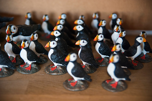Gift Shop「Miniature Puffin Statues in Gift Shop, Iceland」:スマホ壁紙(8)