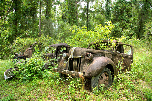 Bad Condition「Vintage Ford Truck, Abandoned, North Florida」:スマホ壁紙(19)
